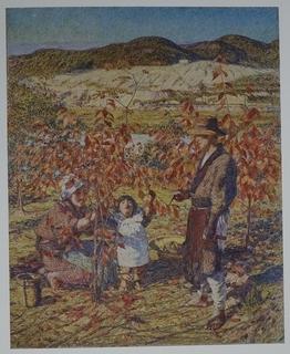 1915kojima.JPG